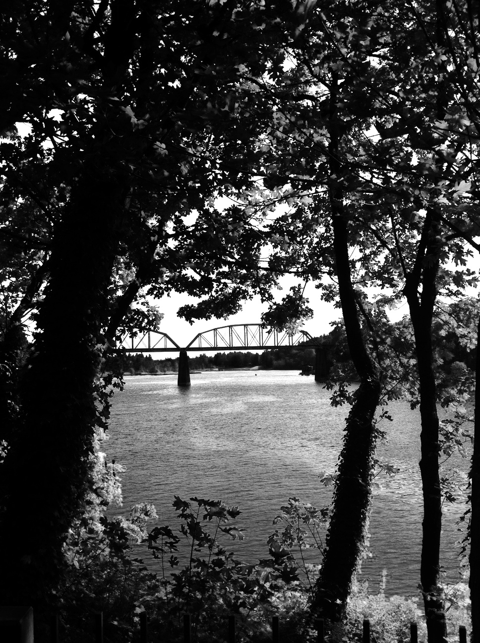 Karens LO River Photo 1 B&W for History Page